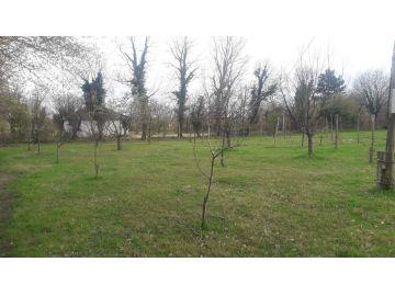 Građevinsko zemljište, Prodaja, Danilovgrad, Jelenak