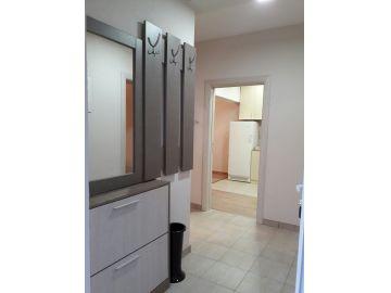 Stan u višeetažnoj kući, Izdavanje, Podgorica, Masline