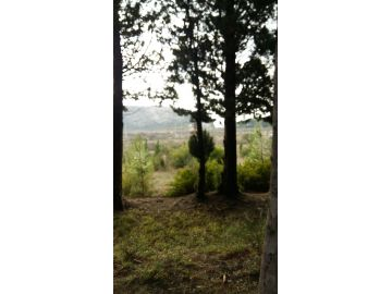 Plot for residential construction, Sale, Bar, Sutomore