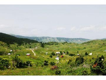Agricultural plot, Sale, Plužine, Trsa